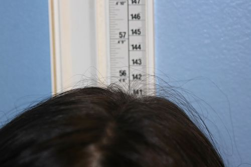 Height411emma