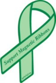 Support_magnetic_ribbons_2