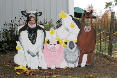 Leedsfarm11
